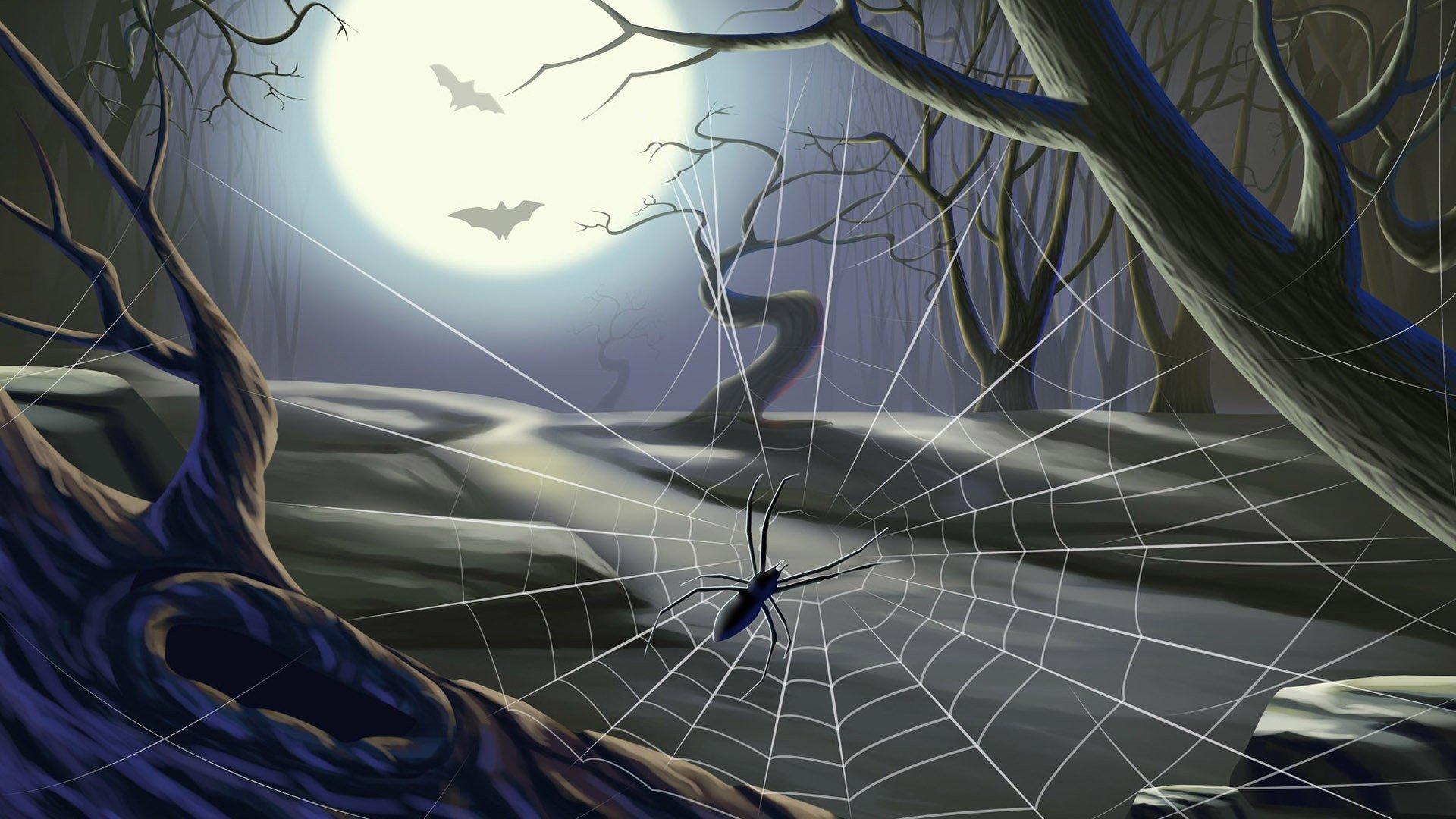 spider-web-tree-bat-moon-halloween